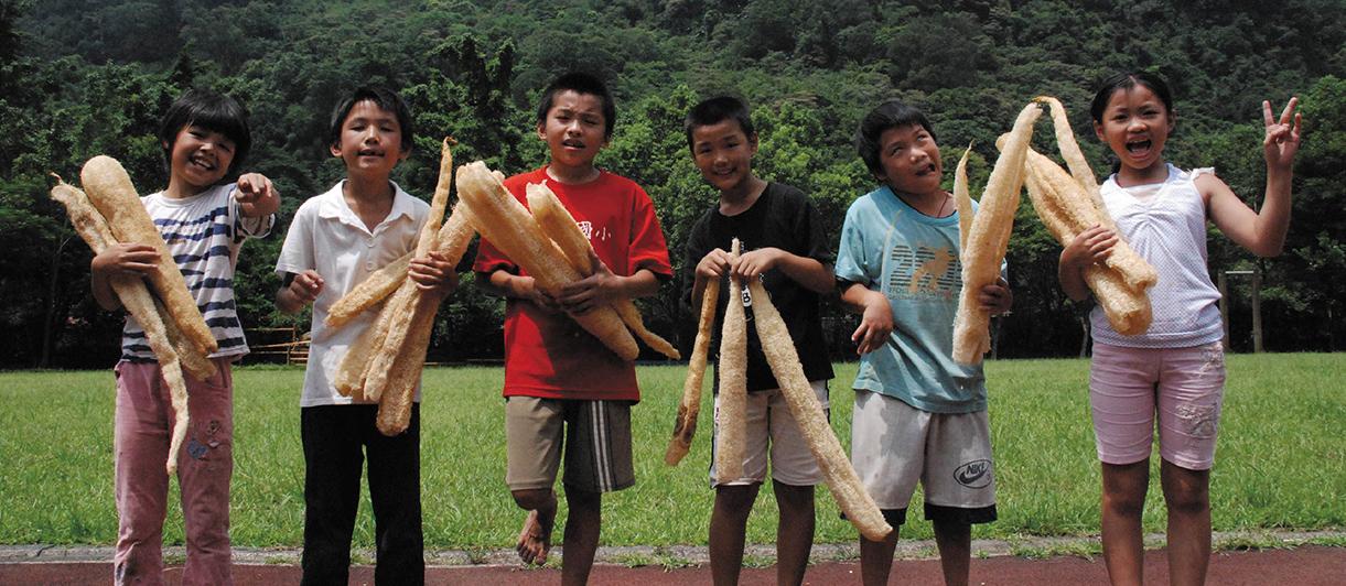 甘樂文創創辦人林峻丞(孩子們都叫他峻哥)2006年返鄉回到三峽,發現社區裡有一群獨自面對黑暗的高關懷、低學習成就的孩子。他們像是生長在社會角落的小草,不起眼的他們總是被大家忽略,但小草的生命堅韌樸實,只要有夢想的灌溉有一天小草也會開出繽紛的花朵。