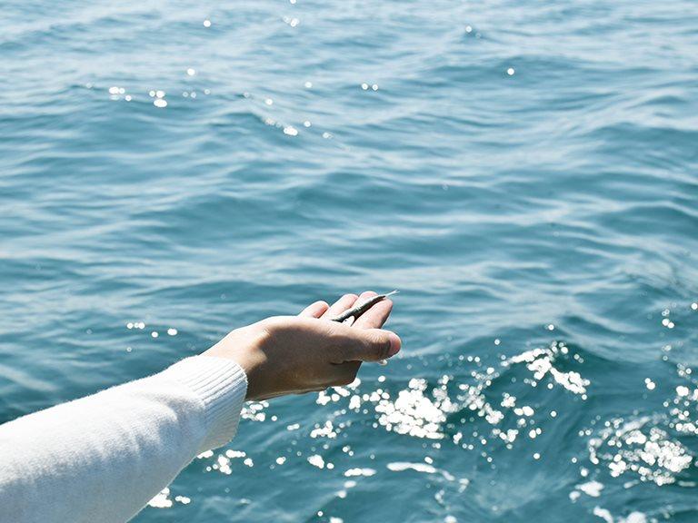 家鄉味主題企劃:記憶 × 味道 —— 記憶中的大海味・丁香魚