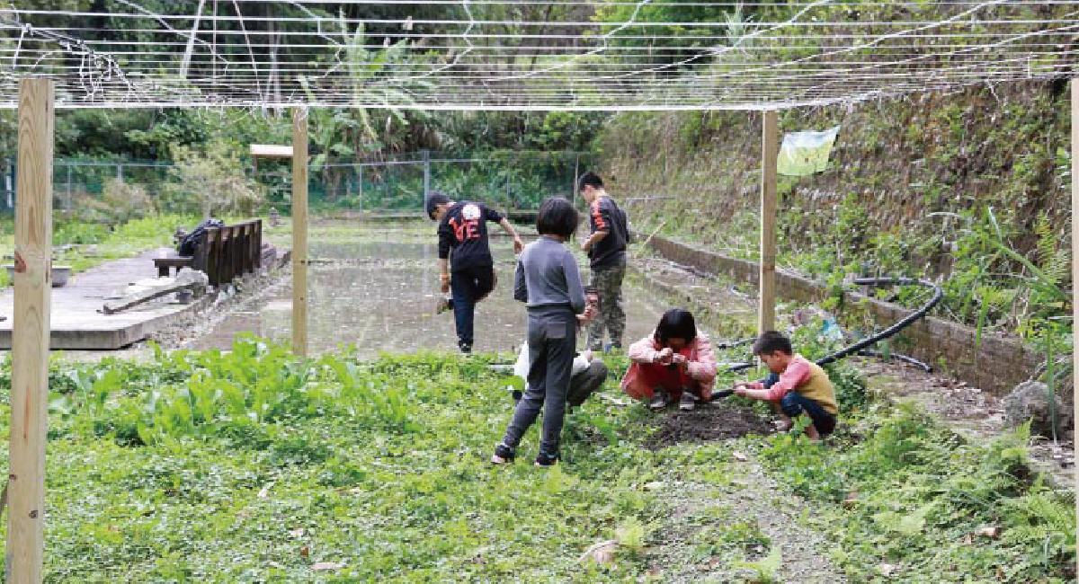 甘樂文創執行長林峻丞,發現社區裡有一群高關懷、低學習成就的孩子。從此開啟了一場沒有退場機制的陪伴,隨著時間的累積,伴隨著孩子們成長,也慢慢的在他們的心裡埋下一顆希望的種子,開啓屬於他們的夢想,灌溉未來的每一天,持續的成長茁壯。 | 小草書屋 | 沒有退場機制的陪伴