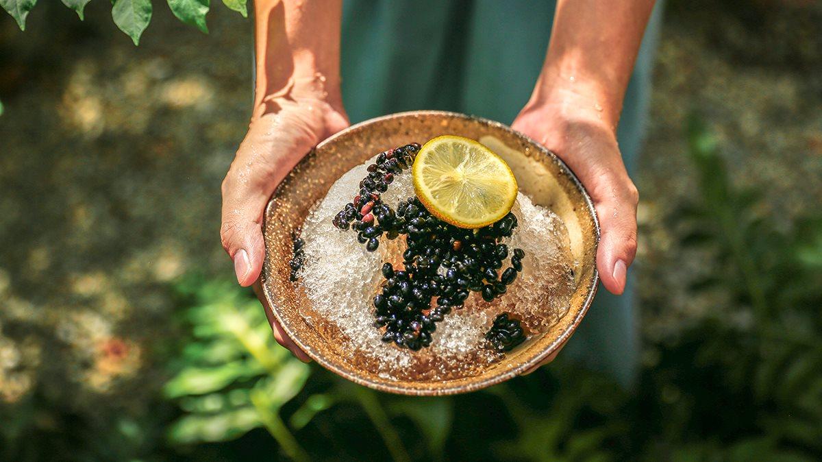 甜蜜蜜青仁黑豆刨冰,使用臺灣國產青仁黑豆|禾乃川小廚房