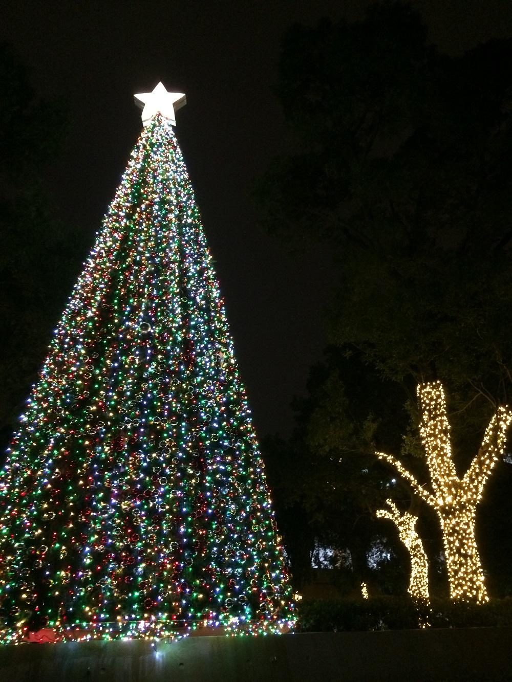 通稿照片-中原聖誕點燈_為桃園點亮希望、傳遞祝福.JPG