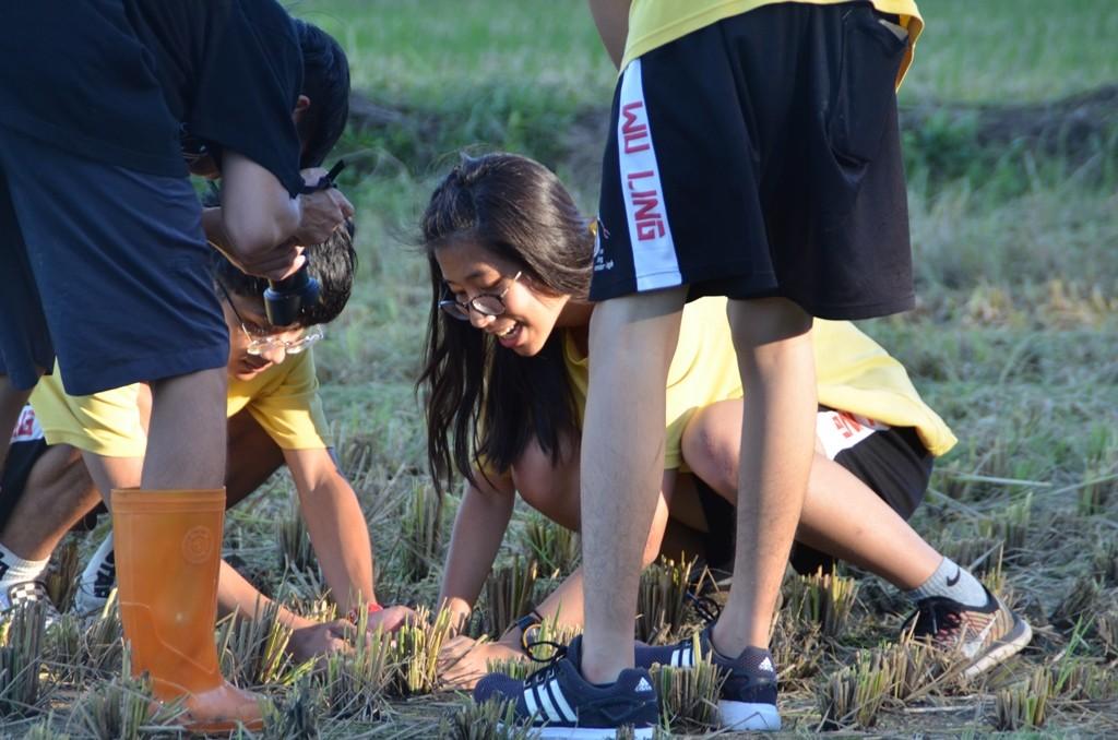08-中原大學結合社區在地推出「瘋霄裡」系列活動讓都市人接觸稻田生態.JPG