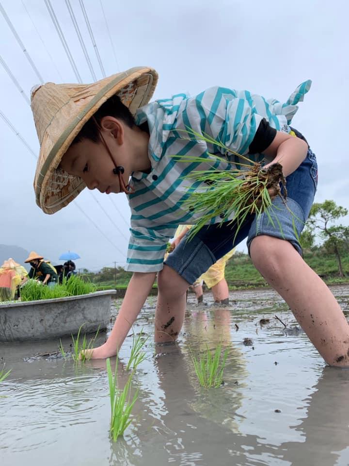 中原大學「小農夫體驗營」 參與的小朋友親自下田插秧.jpg