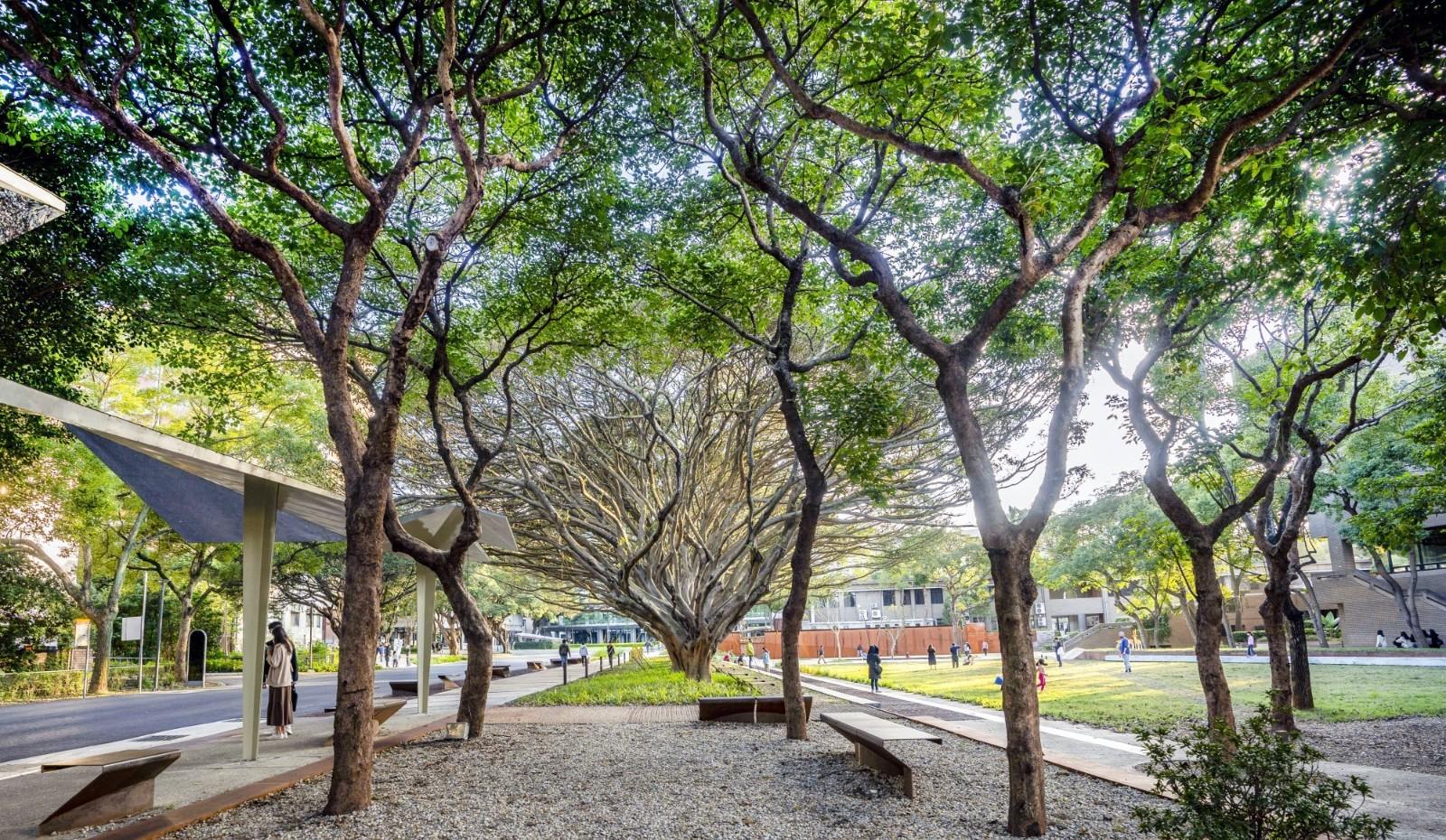 中原大學「泉源之谷」校園景觀,保留完整老榕樹與植栽風貌,展現「永續」校園精神。.jpg