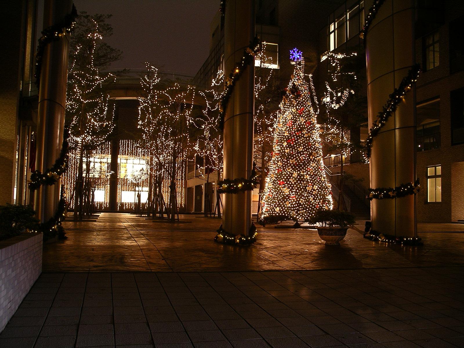 中原大學聖誕點燈 數萬顆燈泡妝點全人教育村